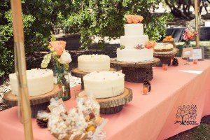 Wedding_Cake_Rustic_Wood