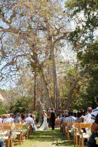 OjaiWedding_Trees_Ribbons